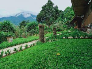 Taman dan jalan ke villa kelapa dan villa kembar